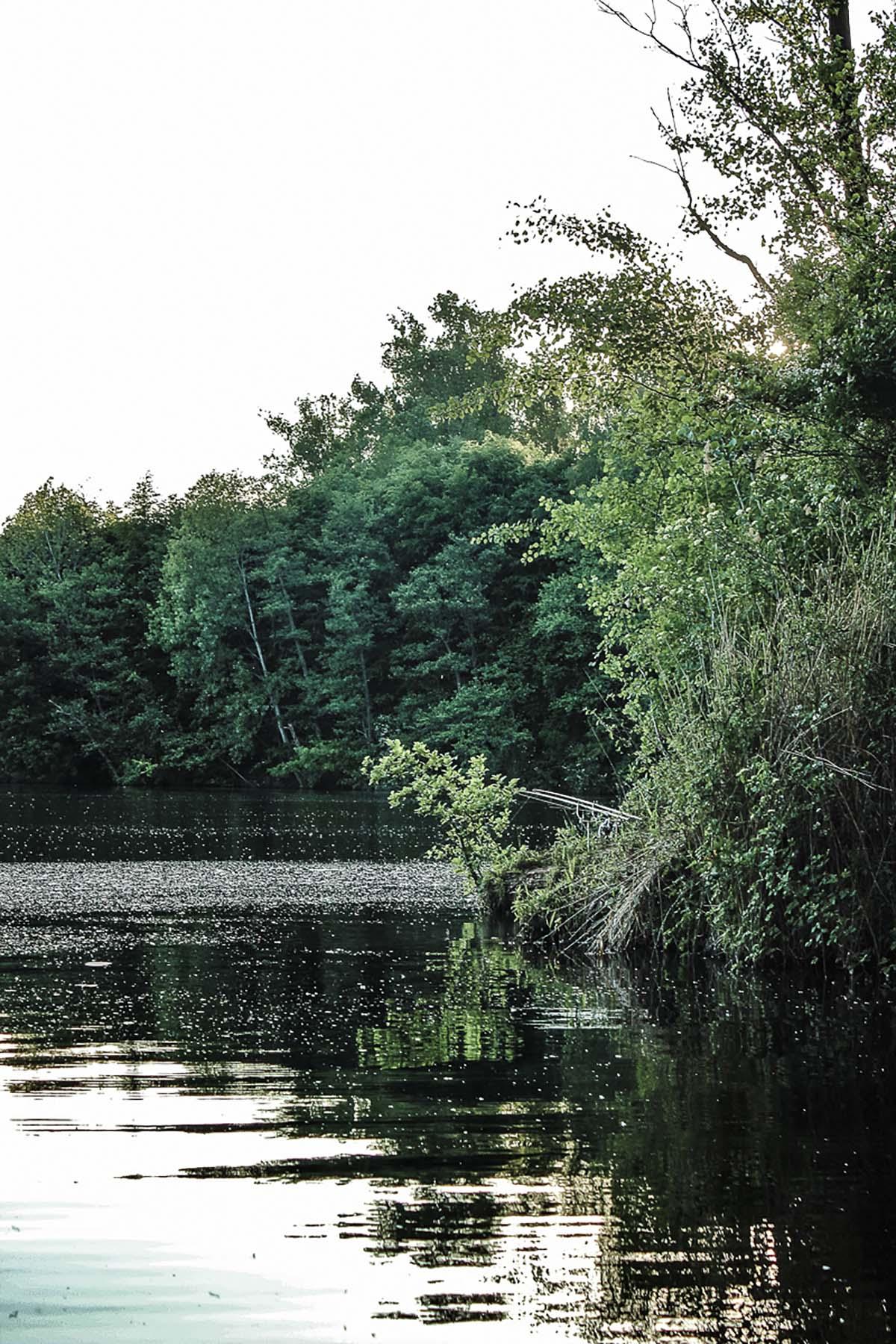 twelveft ausgabe17 christophmuehl 13 - Auf zu neuen Ufern - Teil 1
