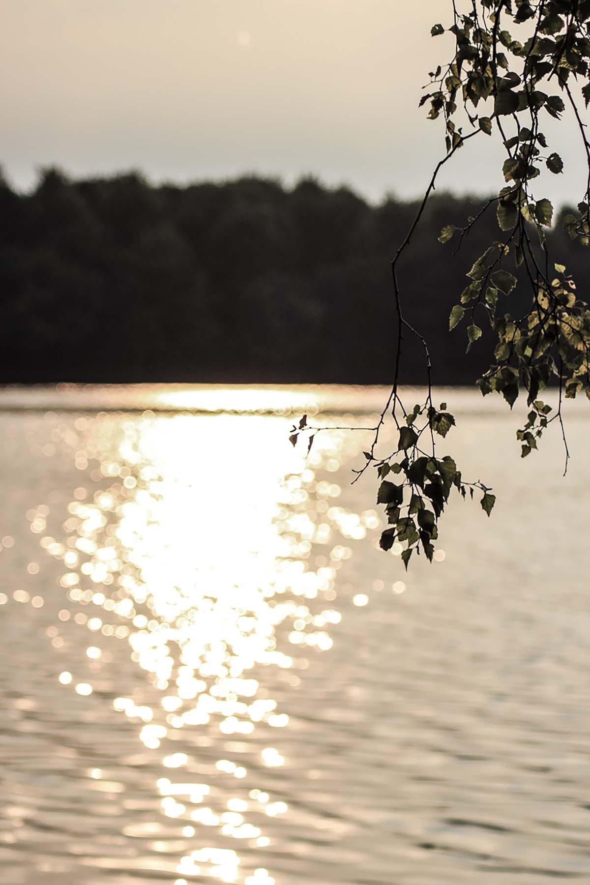twelveft ausgabe17 christophmuehl 19 - Auf zu neuen Ufern - Teil 1
