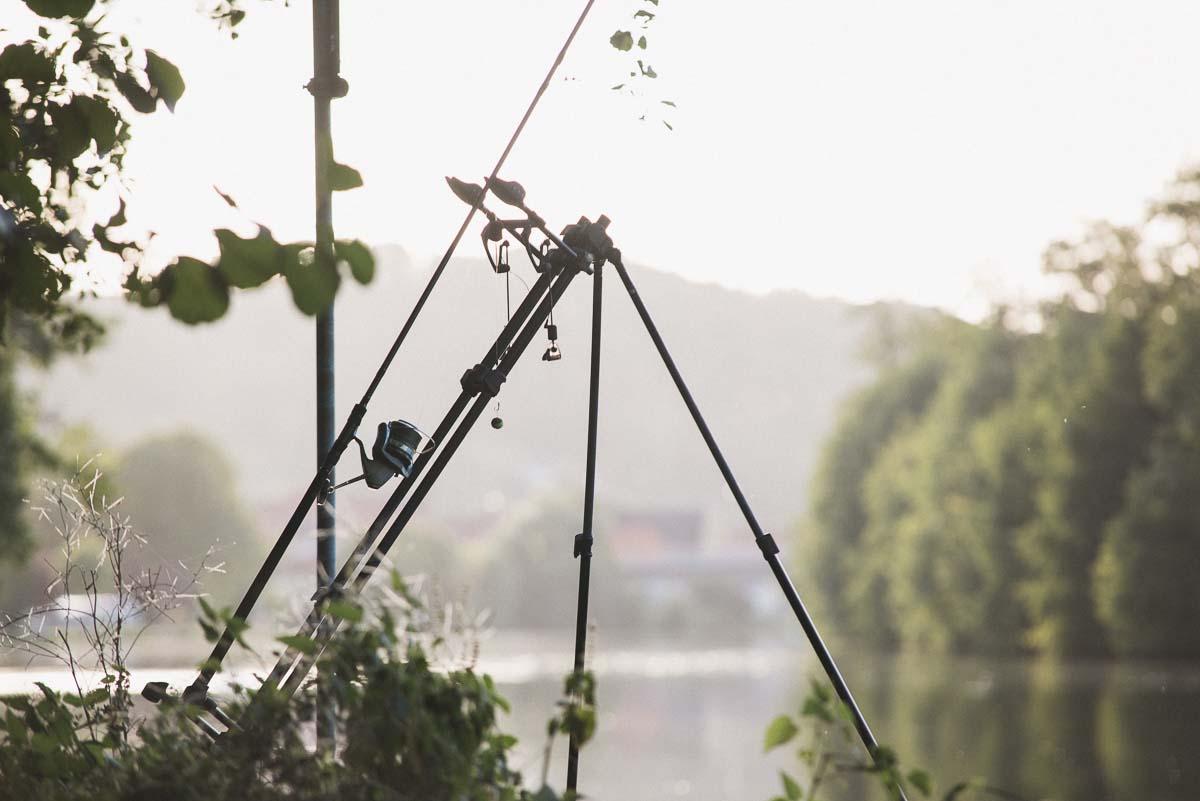 twelvefeet ausgabe19 philipp resch 12 - Flussangeln – Pure Freiheit. Große Fische