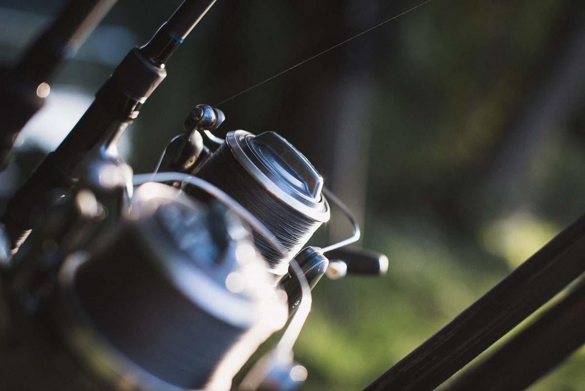 twelvefeet ausgabe19 philipp resch 29 - Flussangeln – Pure Freiheit. Große Fische