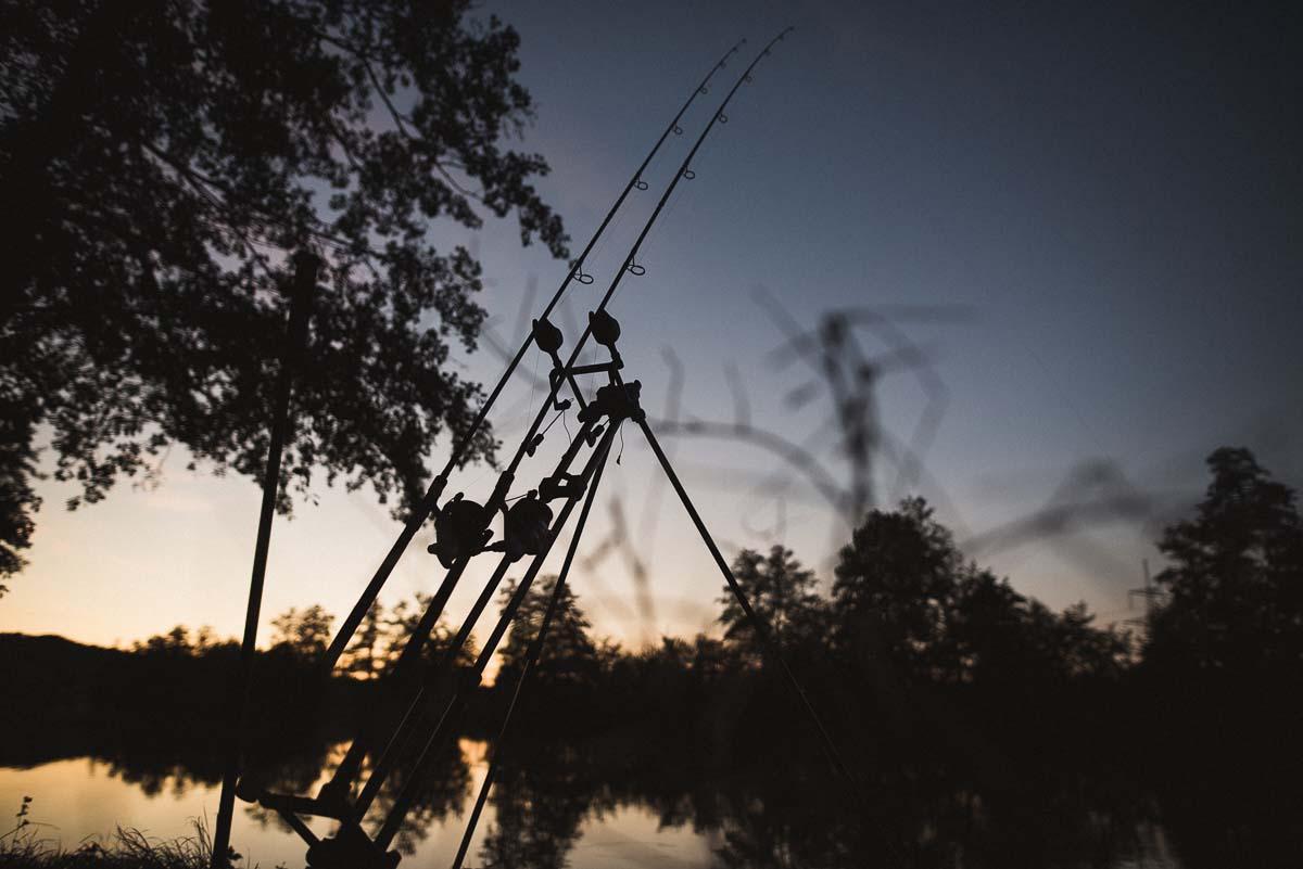 twelvefeet ausgabe19 philipp resch 37 - Flussangeln – Pure Freiheit. Große Fische