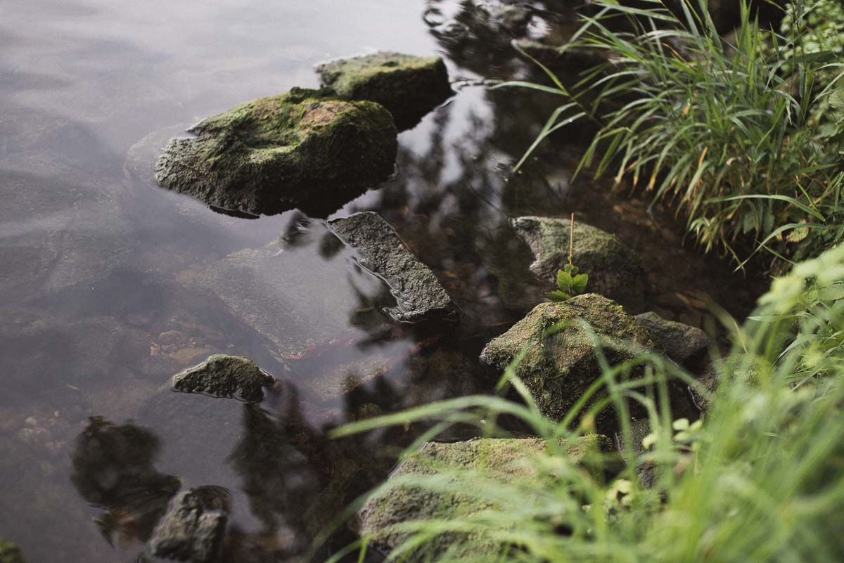 twelvefeet ausgabe19 philipp resch 44 - Flussangeln – Pure Freiheit. Große Fische