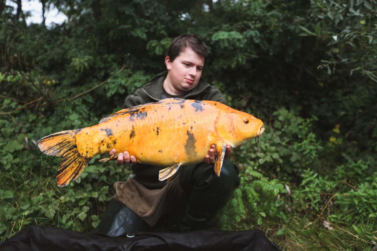 twelvefeet ausgabe19 philipp resch 76 - Flussangeln – Pure Freiheit. Große Fische