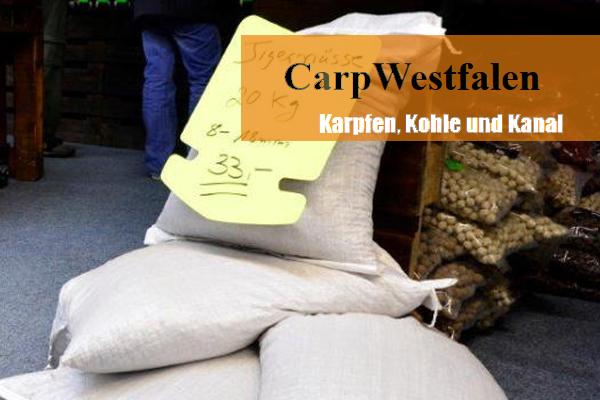 messe3 -  - Zeche, Westfalen, Ruhrpott, Kohle, Karpfenmesse, Karpfen, Kanal, Industrie, CarpWestfalen, Ahlen