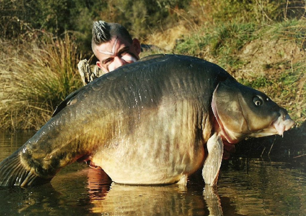 mp2 1024x723 -  - meik pyka, Karpfen, IB, Heiliger See, Erfolge, Damian simonelli, Crawfish, Cassien, carptrack, Big Ones, alex kolacz