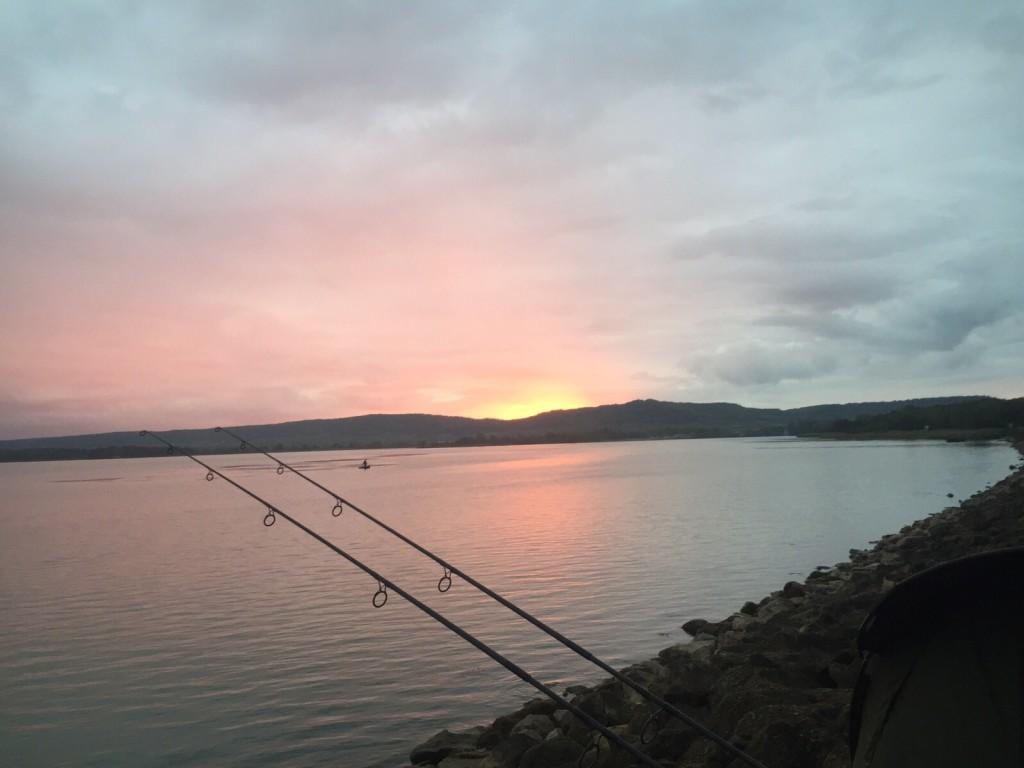 IMG 8674 1024x768 -  - WCC 2015, Resümee, Madine, HZ-Baits, frankreich, Competition, Big fish