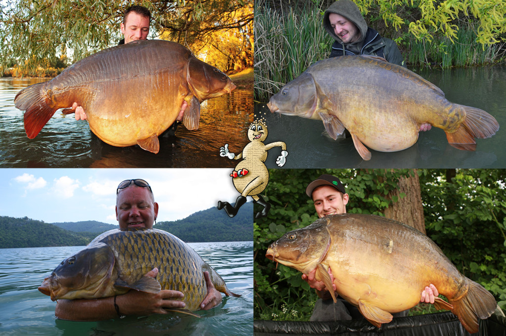 Kompo Teamnew 1024x680 -  - Tigernüsse, successful-baits, Pellets, Köderschmiede, karpfenangeln, Christian Heymanns, boilies, Baits, 20 Jahre Successful Baits