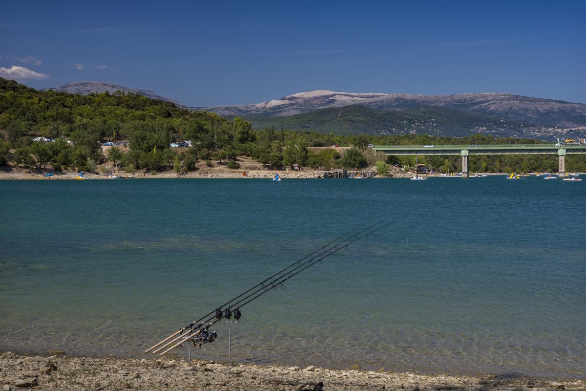 5 Angler – 5 Meinungen // Rod pod vs. Buzzer…