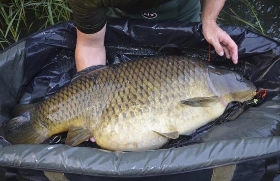 Titel fichgewicht 570x370 - 5 Angler - 5 Meinungen // Die Jagd nach Fischgewicht!