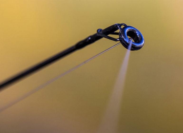 Karpfenruten 10ft 770x560 - Marktcheck: 10 ft. Ruten!