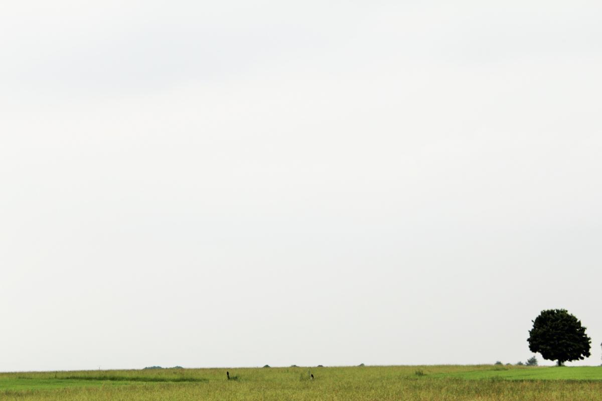 Der Blick auf weite Felder und einen naturbelassenen kleinen Stausee lassen einen entspannen und die Zeit sprichwörtlich vergessen