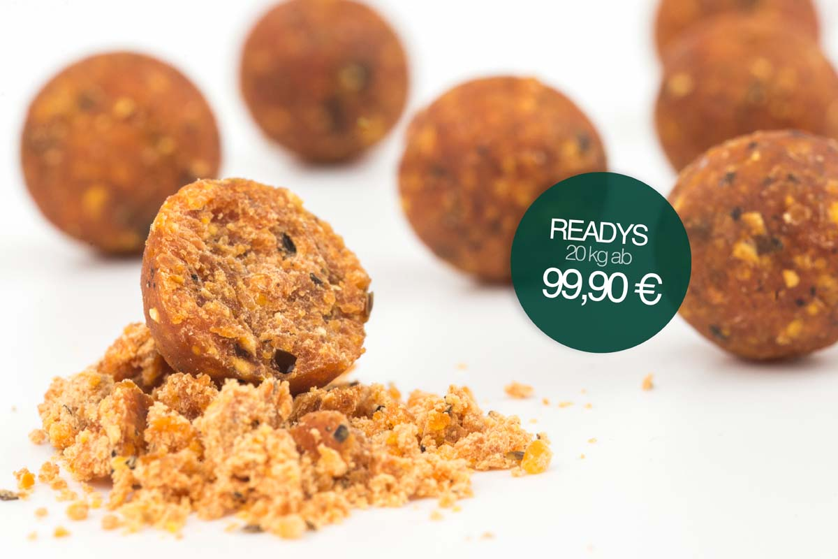 Fertigboilies - Countdown: Successful Baits Angebotswoche endet!