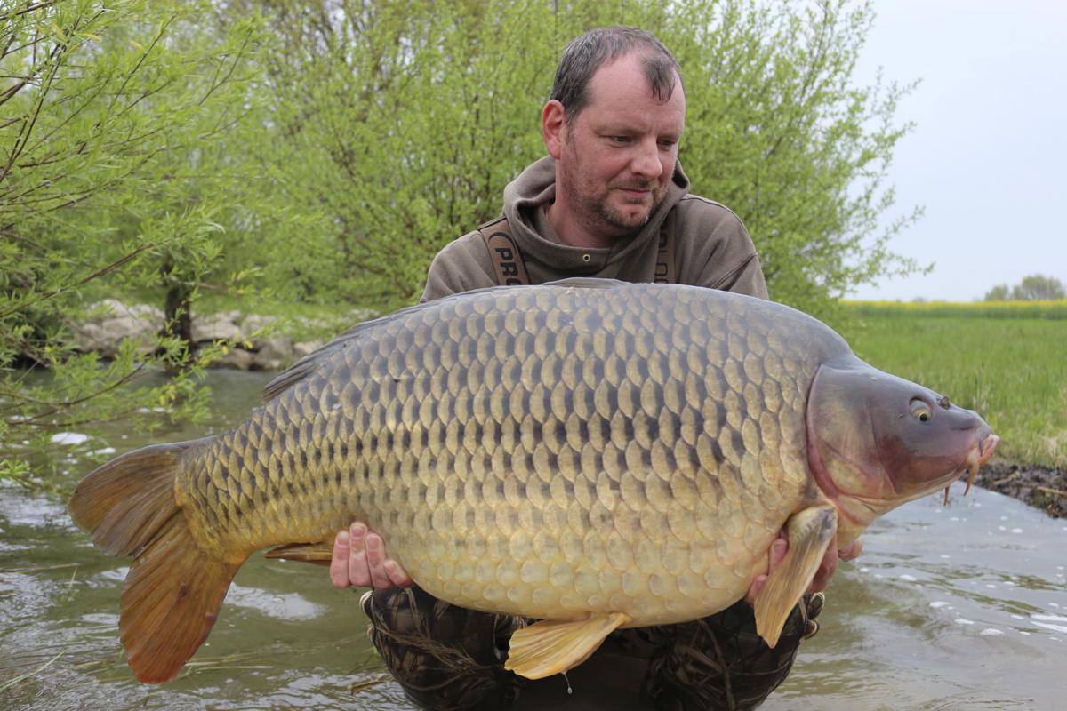 Jurgen Lievens -  - Luis Niedergassel, Jurgen Lievens, Jan Federmann, Imperial-Baits, imperial fishing, Glenn Labie