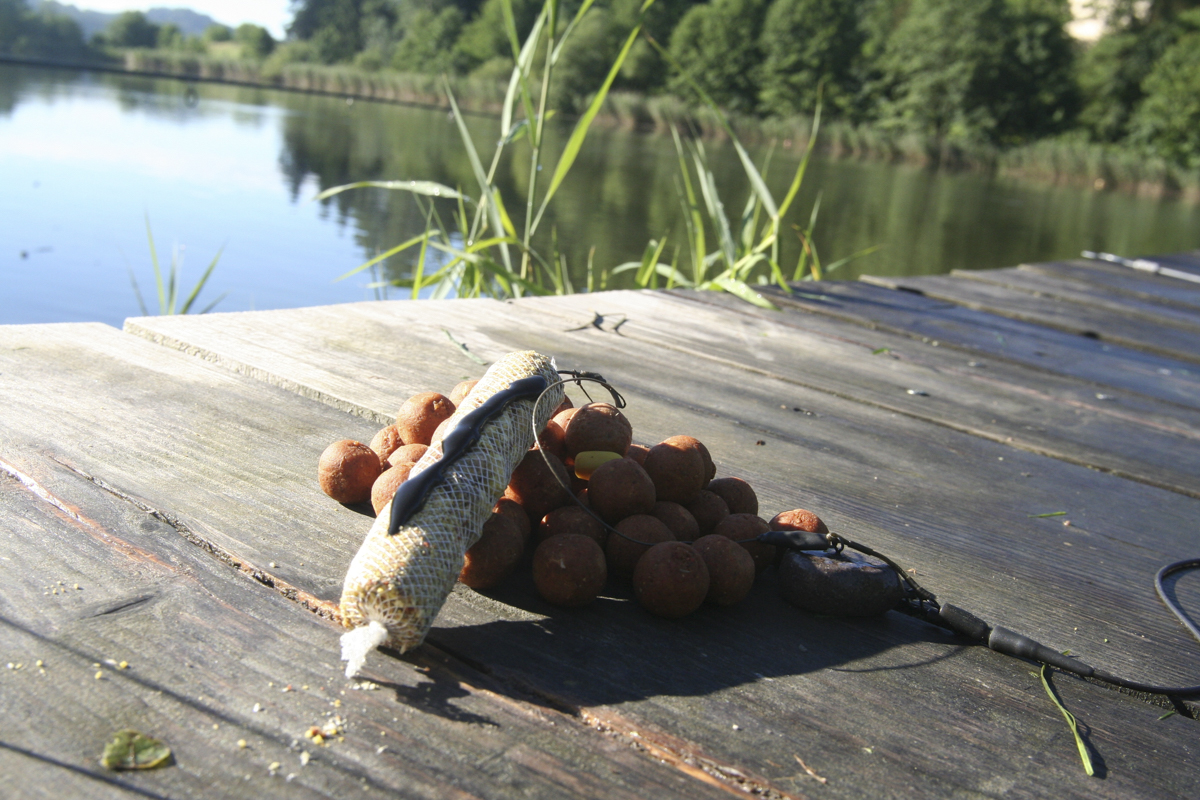 IMG 0348 -  - Spicy Chicken, Fangreport, Christian Jany, catch, Aquatic Baits