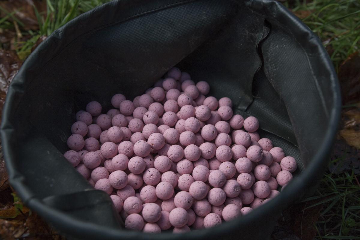 Pastellfarbenes Pink soll den Rüssel der Winterkarpfen öffnen.