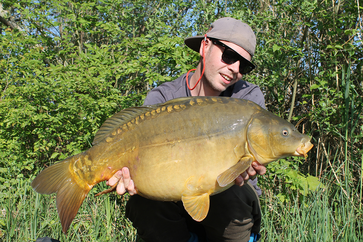 Teamer Jacob Gilcher 1 GLM -  - Mussel, LegendBaits, Legend Baits, Greenlippedmussel, Greenlipped, GLM+, boilies