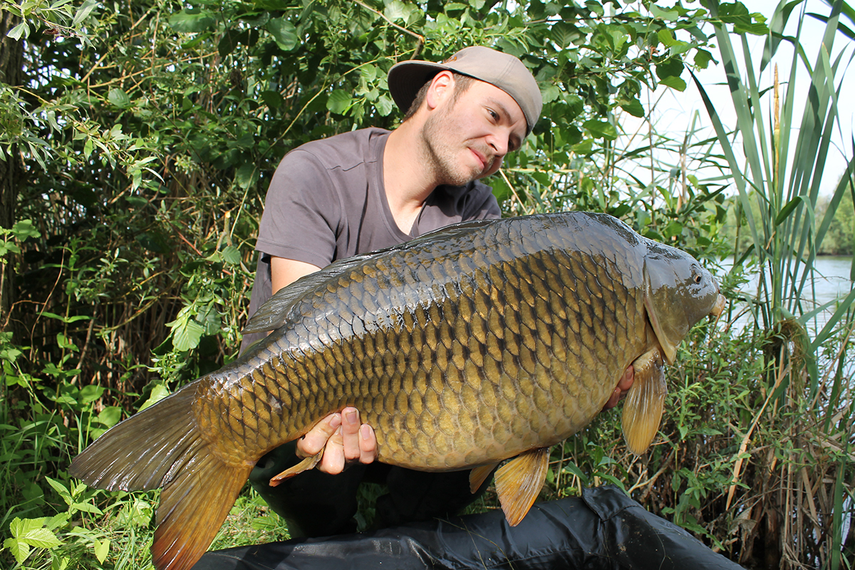 Teamer Jacob Gilcher 3 GLM -  - Mussel, LegendBaits, Legend Baits, Greenlippedmussel, Greenlipped, GLM+, boilies
