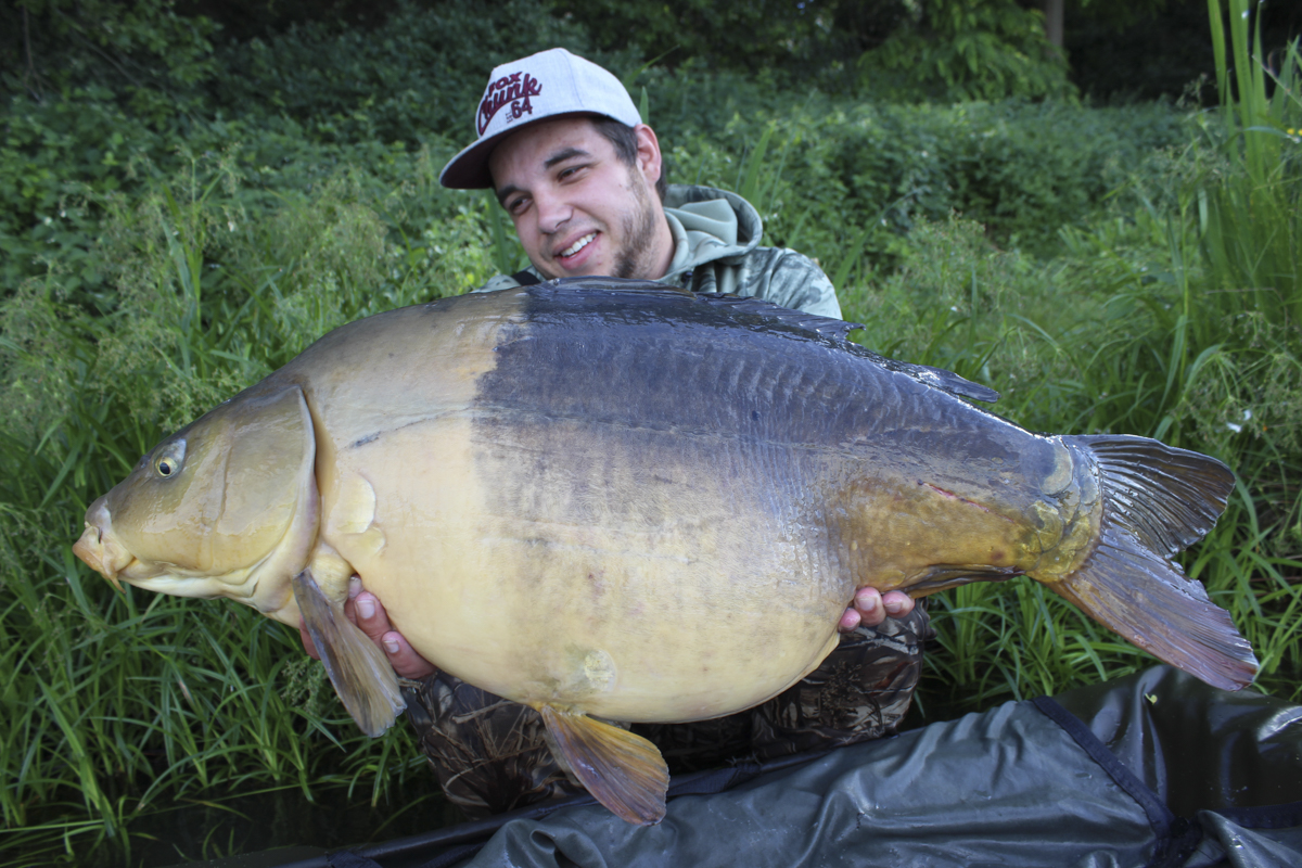 Was ein Fisch! Deutlich über 15 kg und krasse Farben.