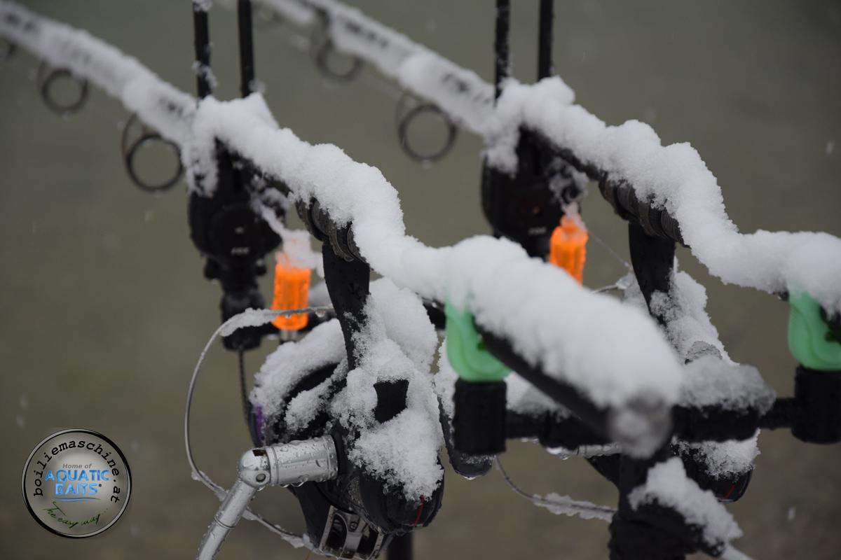 DSC 1399 -  - Winterangeln, österreich, Karpfen im Winter, Fishing, Carpfishing, Baits, Aquatic Baits, Abenteuer