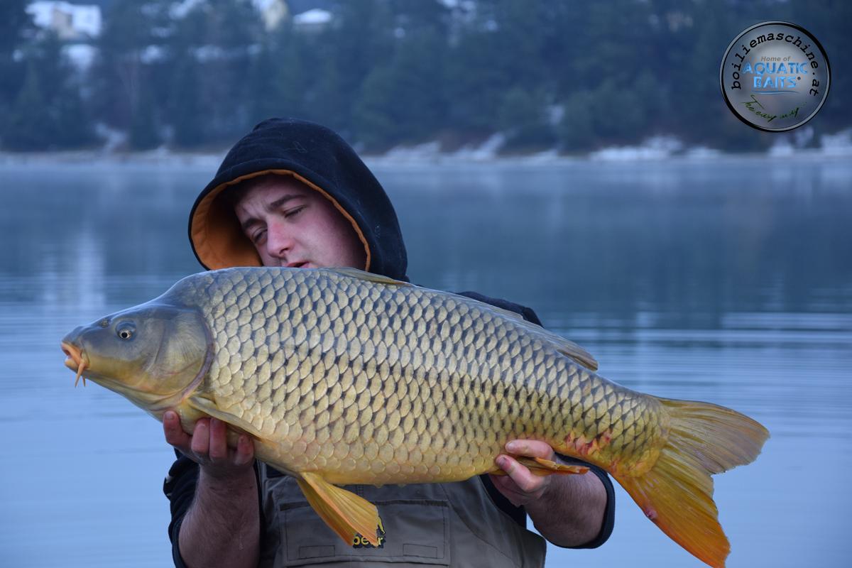 DSC 1435 -  - Winterangeln, österreich, Karpfen im Winter, Fishing, Carpfishing, Baits, Aquatic Baits, Abenteuer