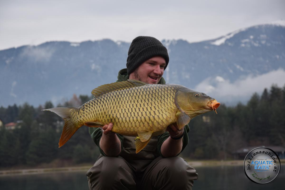 DSC 1465 -  - Winterangeln, österreich, Karpfen im Winter, Fishing, Carpfishing, Baits, Aquatic Baits, Abenteuer