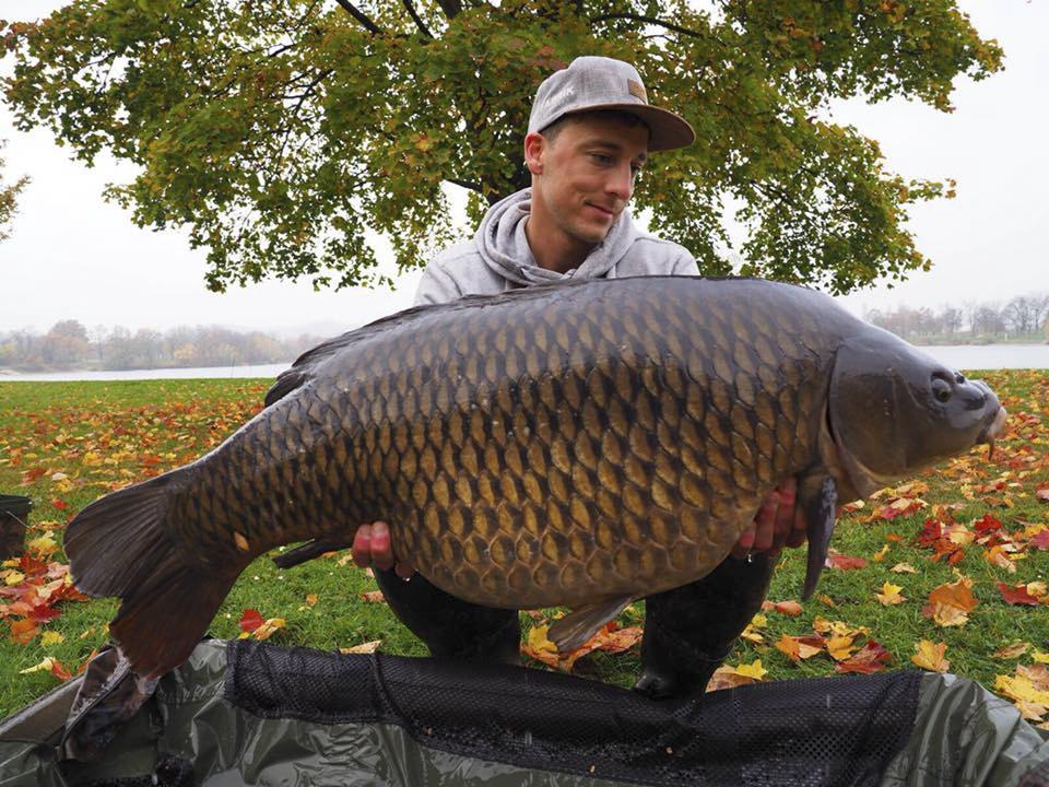 Franz 07.11 - Fanggalerie mit reichlich Dickfisch!