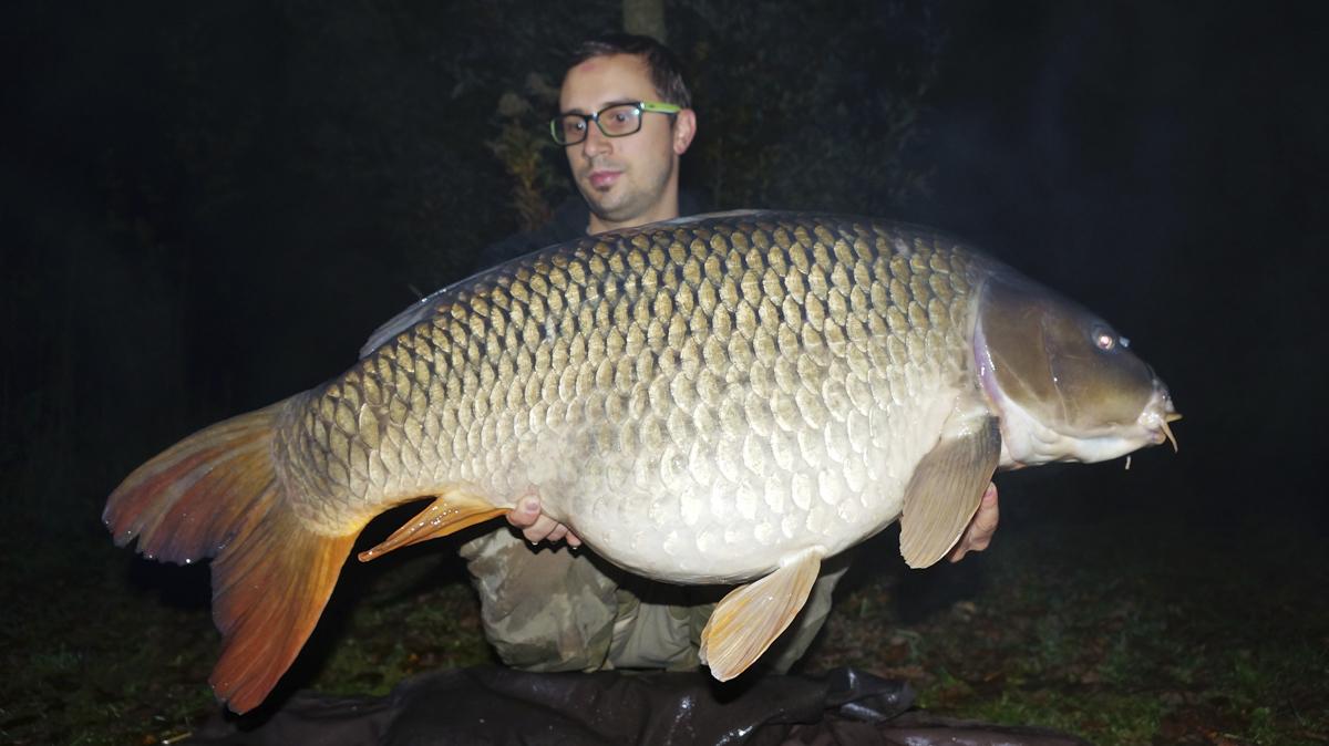 Stefan Hurnaus 02.11 - Fanggalerie mit reichlich Dickfisch!