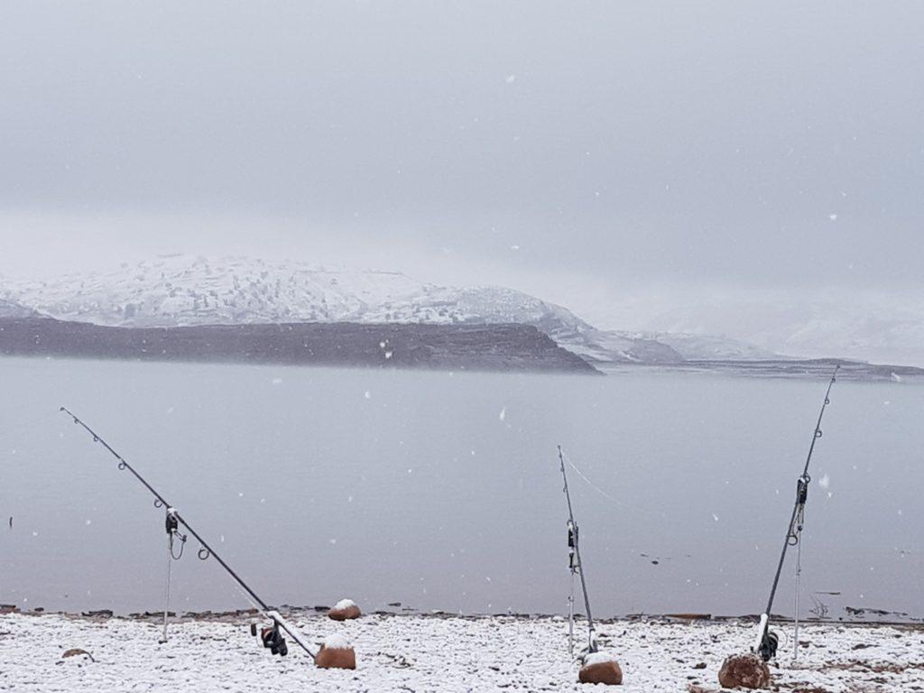 Aquatic Baits 6 -  - marokko, boilies, Bin El Ouidane, Baits, Aquatic Baits