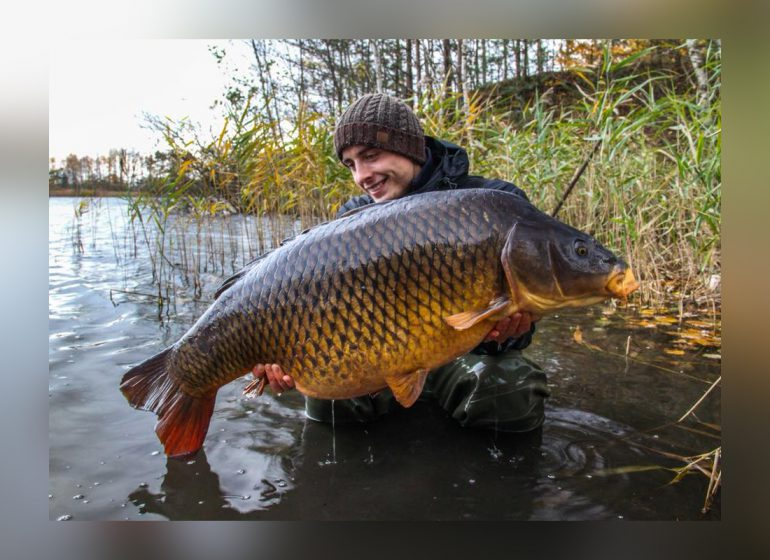 Titelbild Bait Perfection 770x560 - Neuer Teamangler bei Bait Perfection!
