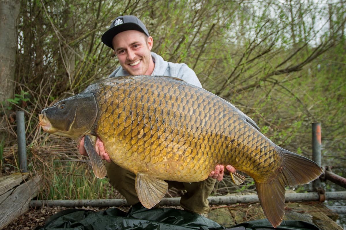 Niederrheingold -  - successful-baits, Scoberry, Niederrheingold, Niederrhein, max ingenhaag, lifestyle, Fishing Connection Niederrhein