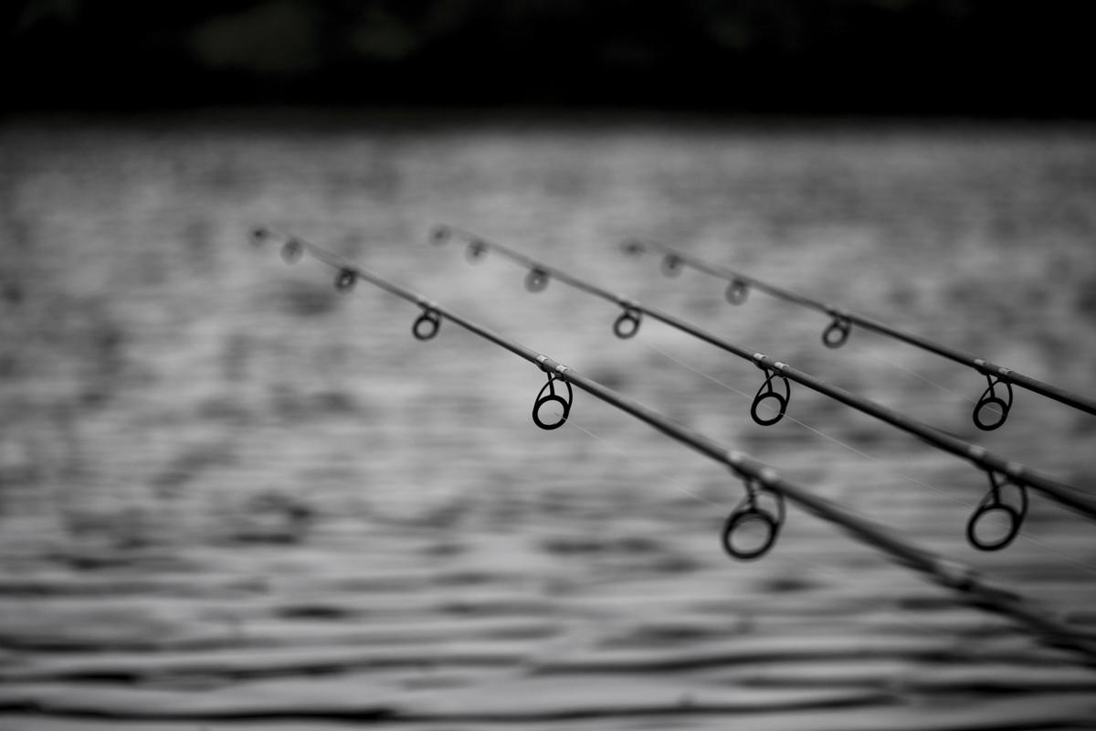 Angeln gehen, Erfahrungen sammeln und aus Fehlern lernen. Am besten am Wasser und nicht in den sozialen Medien.