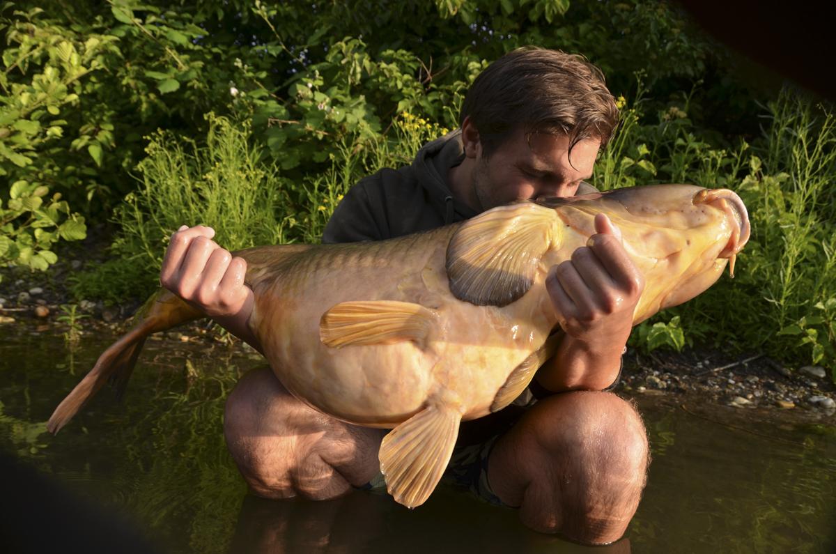 Große Fishe erregen Aufmerkamkeit dessen muss man sich bewusst sein -  - Simon Grolig, Schmarotzer, Nils Oetjen, Michael Schützenmeister, Infos nehmen, Info geben, Christoph Mühl, 5 Angler - 5 Meinungen