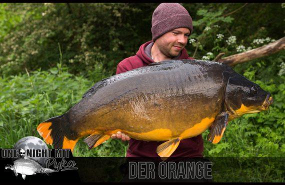 Titelbild Orange 570x370 - One Night mit Pyka: Der Orange!