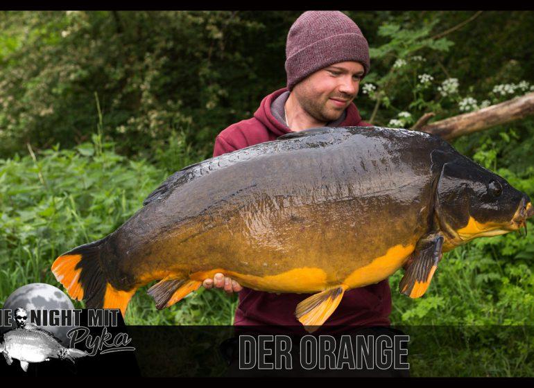 Titelbild Orange 770x560 - One Night mit Pyka: Der Orange!