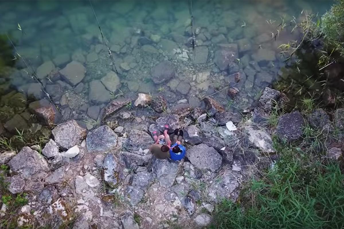 Carplifer - Lac du Der & more – Webvideo der Woche
