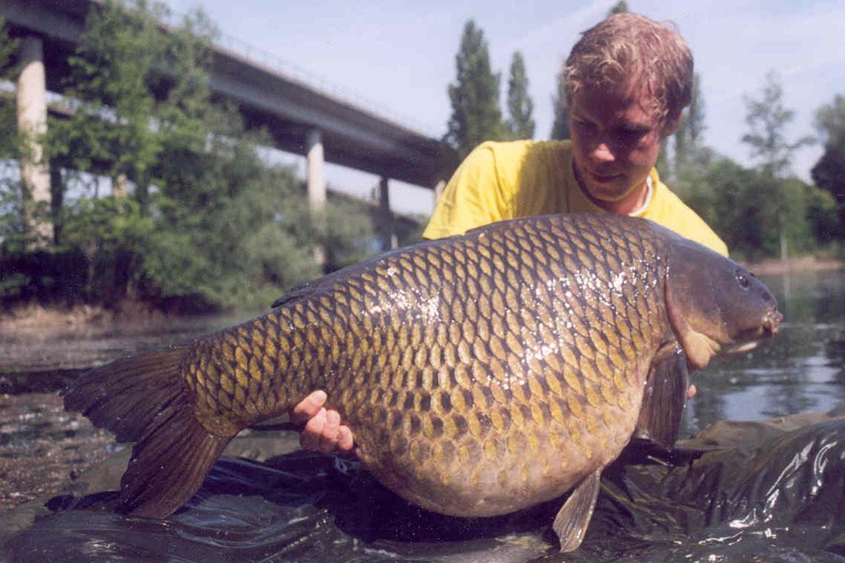 38rh04 1 -  - Zielfisch, karpfenangeln