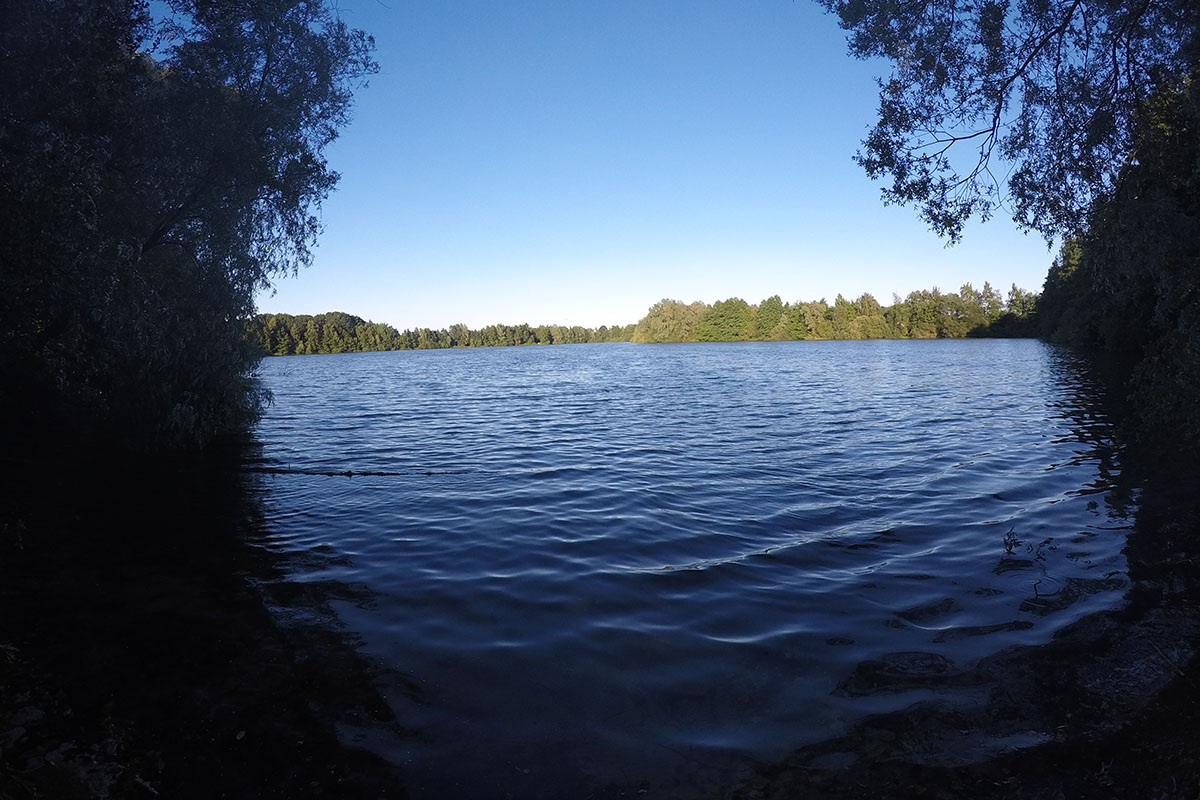 """GOPR1149 1530470549046 high - 5 Angler – 5 Meinungen: """"Mein Zielfisch wurde geklaut"""""""