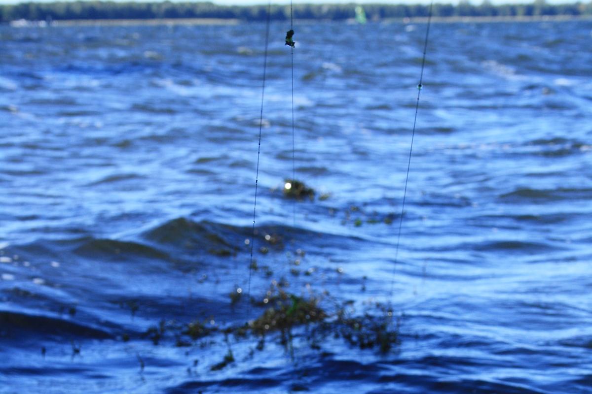 Martin Hoepfel Dreambaits18 - Martin fischt Longrange – Seine Tipps!