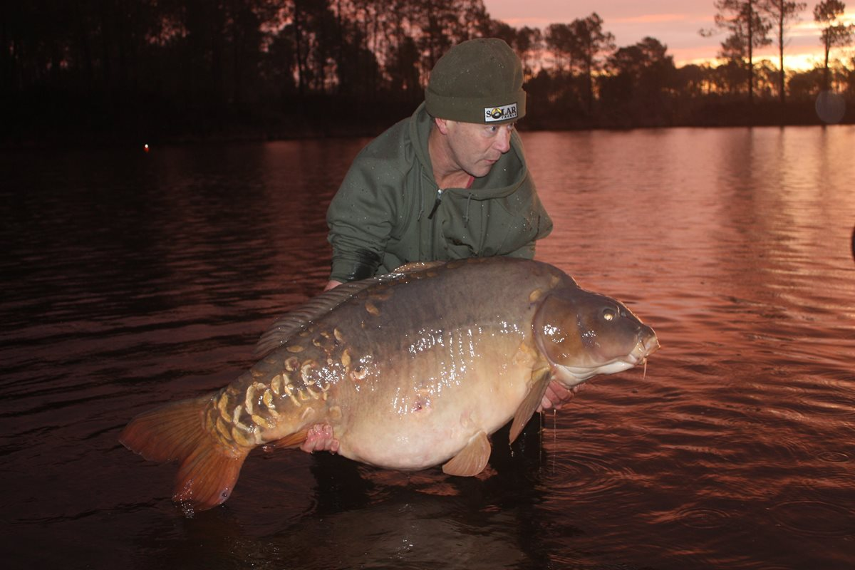 PIC a53 -  - Solar Tackle