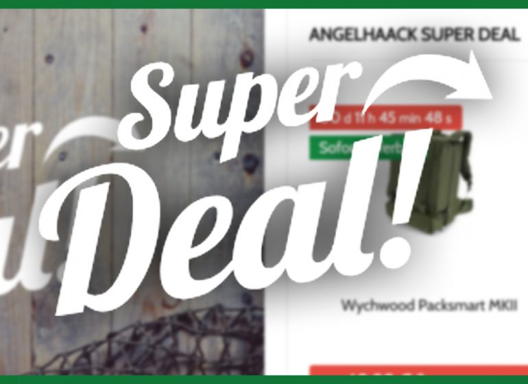 Super Deal AngelHAACK2 770x560 - Kennst du den Super Deal?