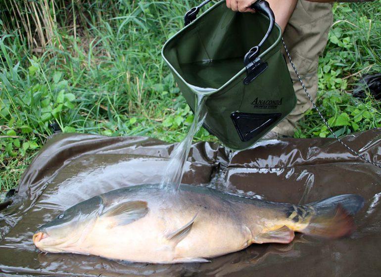 twelveft ANACONDA Pull Bucket 17 1 770x560 - Hilfsmittel für gutes Fish care