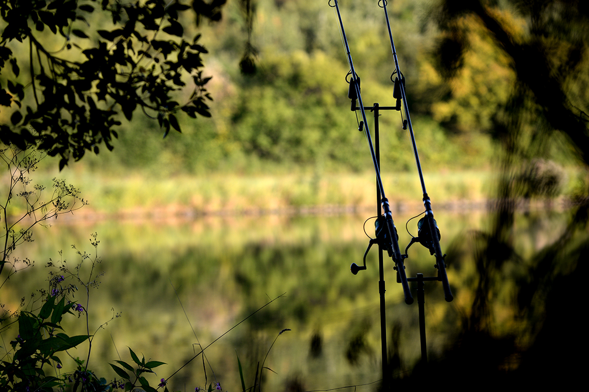 twelveft angling direct rabatte - Ab heute: Herbstrabatte bei Angling Direct