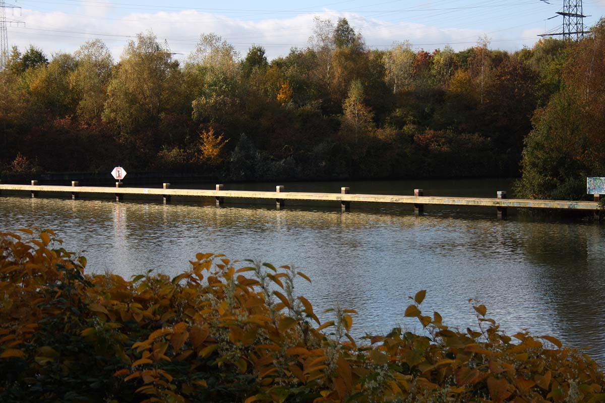 twelveft kanalangeln karpfenangeln5 -  - Karpfenangeln Kanal, Kanalangeln, Kanal, herbst