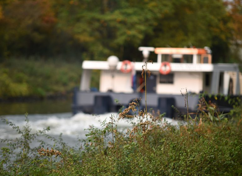 twelveft karpfenspots kanal 770x560 - 5 interessante Herbst-Karpfenspots am Kanal
