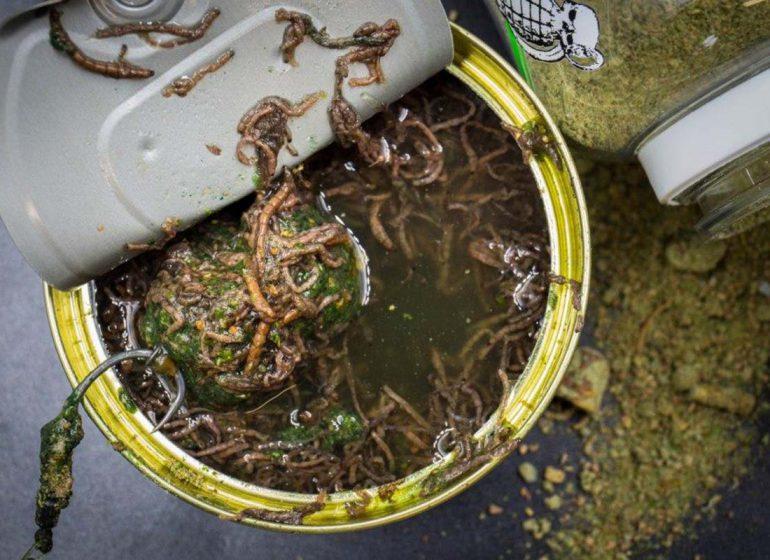 twelveft mybaits bloodworm boiliedip3 770x560 - Freshes Bundle für Fans von Hookbait-Tuning
