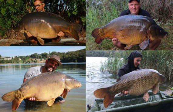 twelveft Titelbild Baitfabrik 570x370 - Big Fish in der Baitfabrik