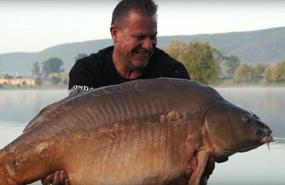 Golden Scales – Fische über 30 Kilo satt…