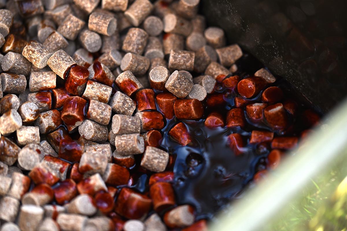 twelvefeetmag boilies soaken karpfenangeln 1 -  - karpfenangeln, boilies