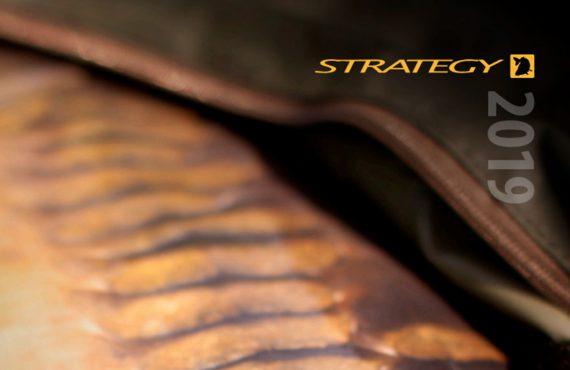 twelvefeetmag strategy katalog 4 570x370 - Strategy 2019 – Neue Produkte. Neuer Katalog.