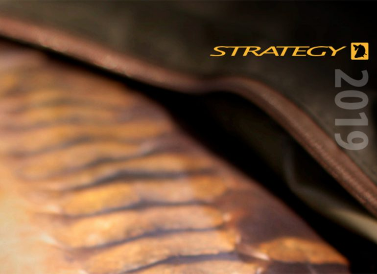 twelvefeetmag strategy katalog 4 770x560 - Strategy 2019 – Neue Produkte. Neuer Katalog.